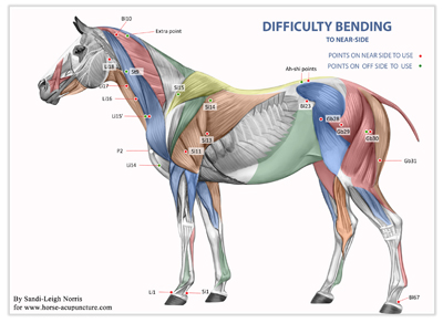 difficulty bending in horse