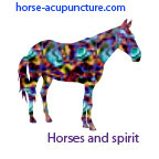 horse acupuncture course logo